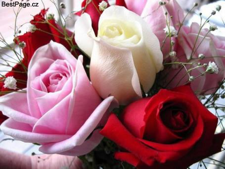 blahopřejeme k narozeninám Společenská rubrika | Aktuality a úřední deska | Obec Vrčeň   Strana 2 blahopřejeme k narozeninám